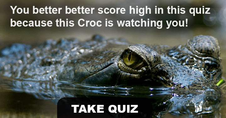 Do you like animals? Then this is the right quiz for you.